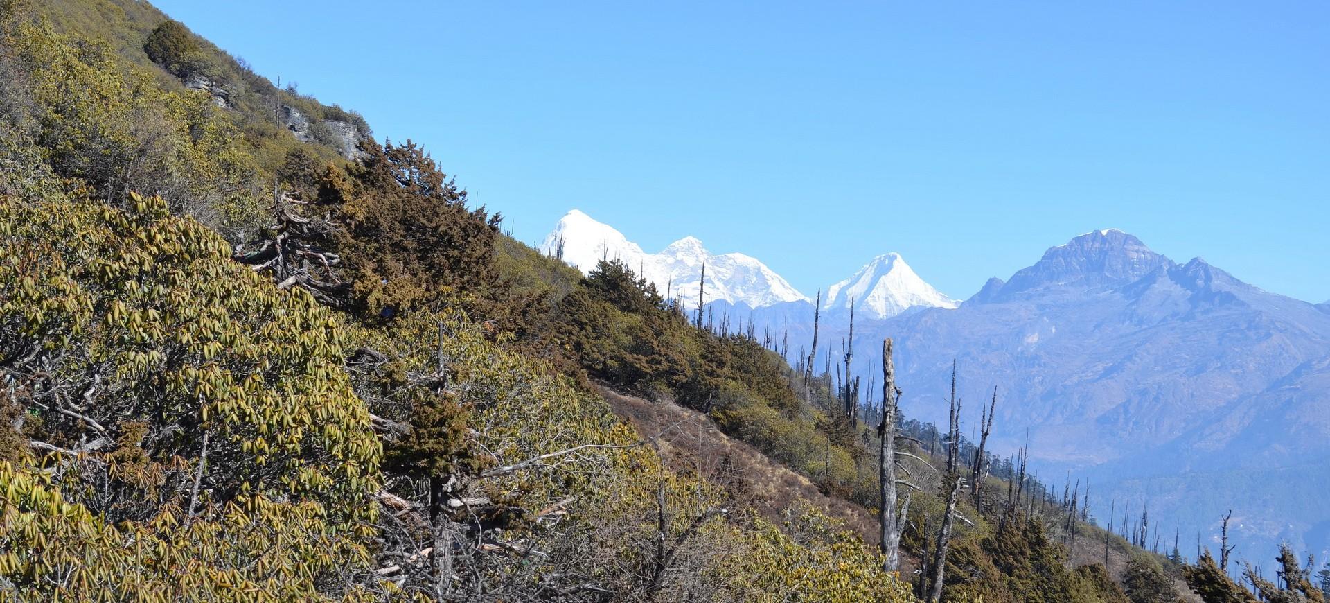 Bhoutan Paro Col de Cheli Cha