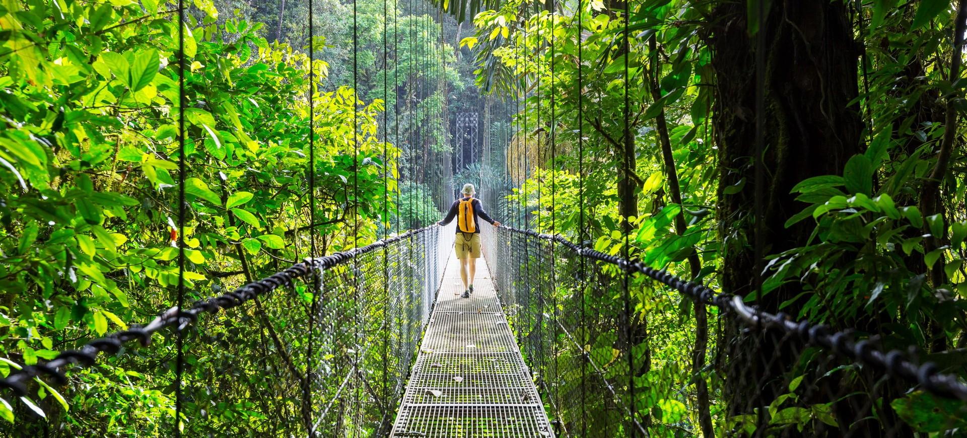 Canopé Tour au Costa Rica