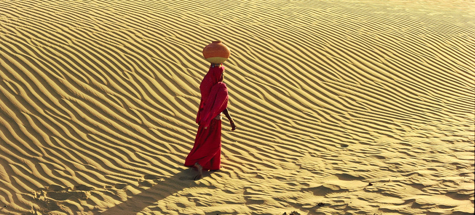 Le désert de Thar à Jaisalmer au Rajasthan
