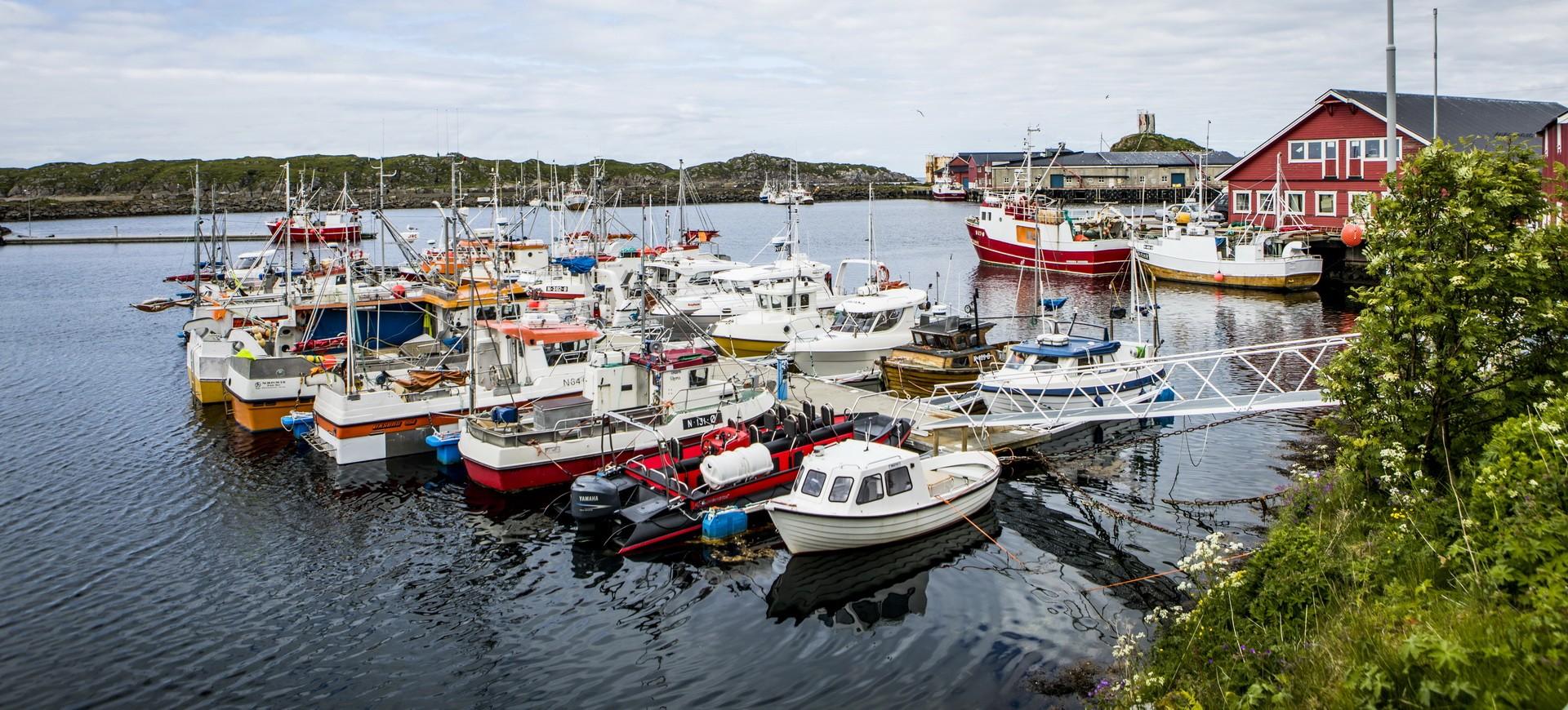 Un ancien village de Pêcheurs à Nyksund en Norvège