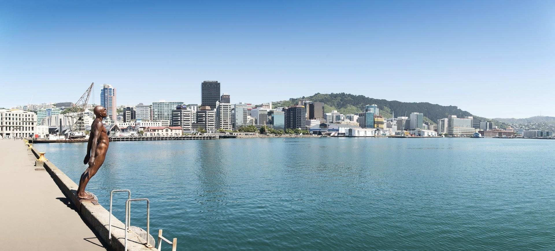 Vue panoramique sur Wellington