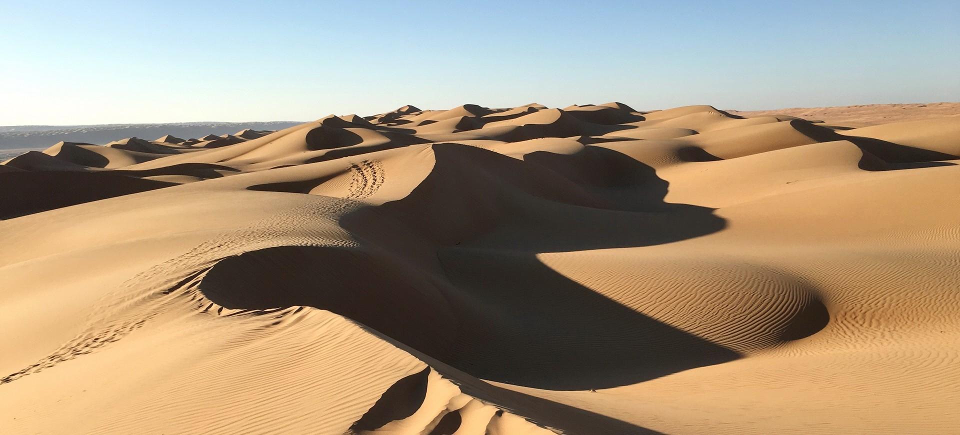 Dunes dans le désert de Wahiba à Oman