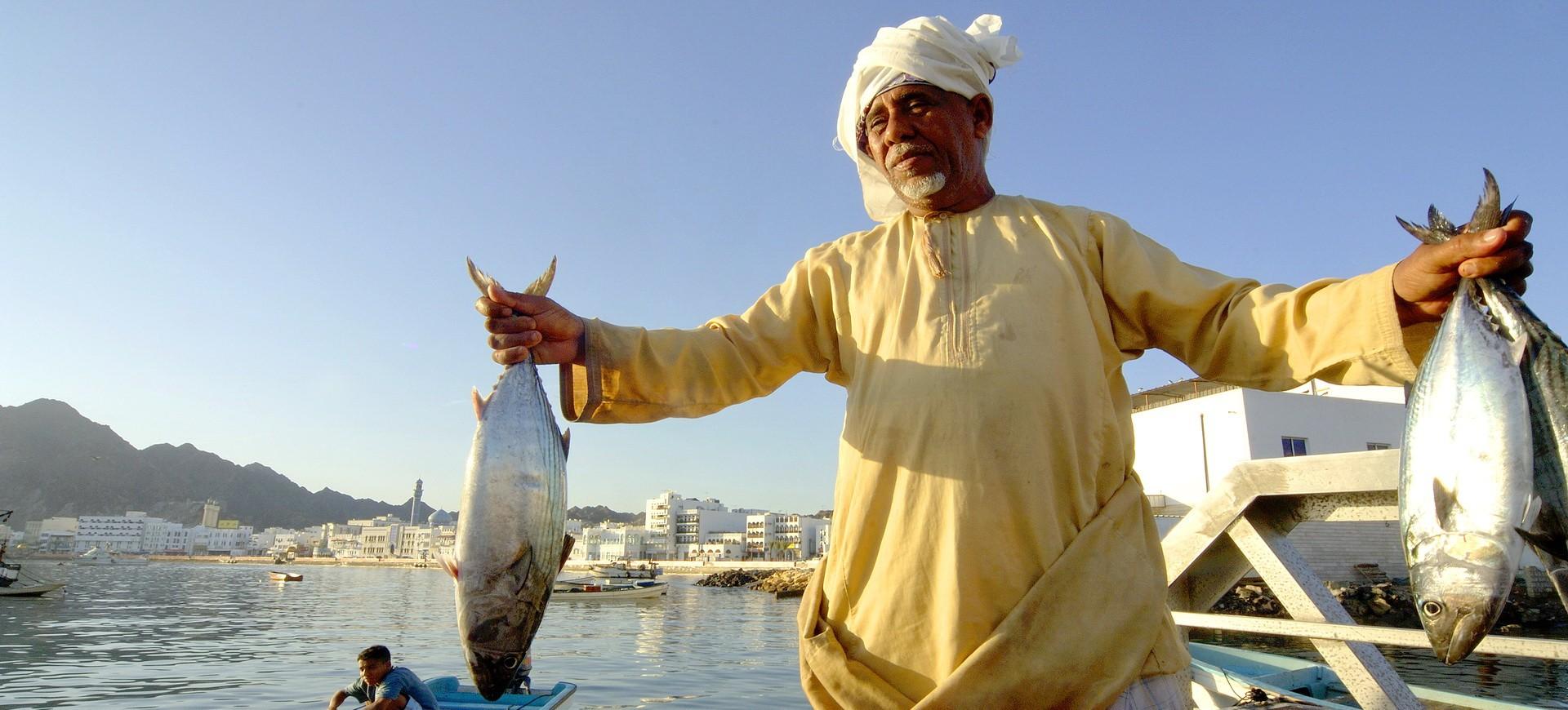 Oman Mascate Marché de poissons sur la corniche