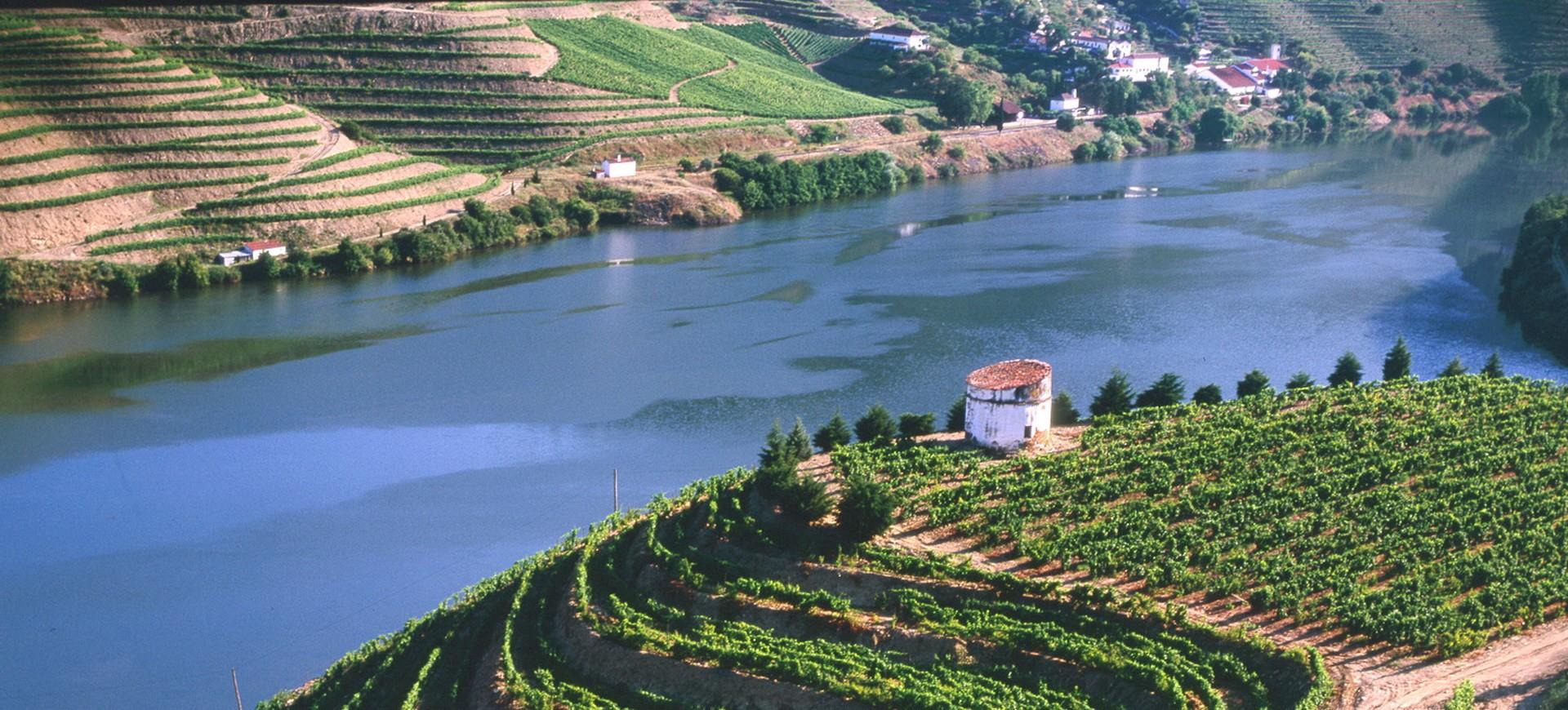 Portugal Vignobles