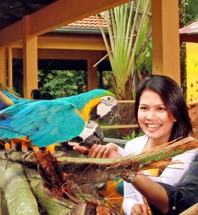Malacca, Penang et l'île de Langkawi