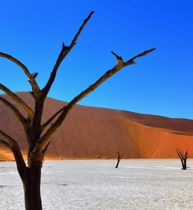 Namibie Route vers le Désert de Namib 003