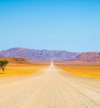 Namibie Désert du Namib Deadvlei